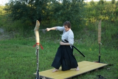 TrainingIaido-03
