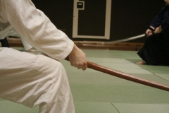 TrainingIaido-35